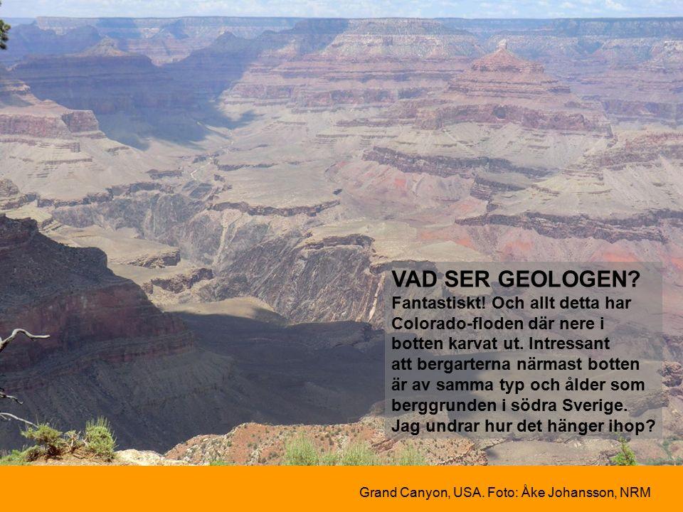 VAD SER GEOLOGEN. Fantastiskt. Och allt detta har Colorado-floden där nere i botten karvat ut.