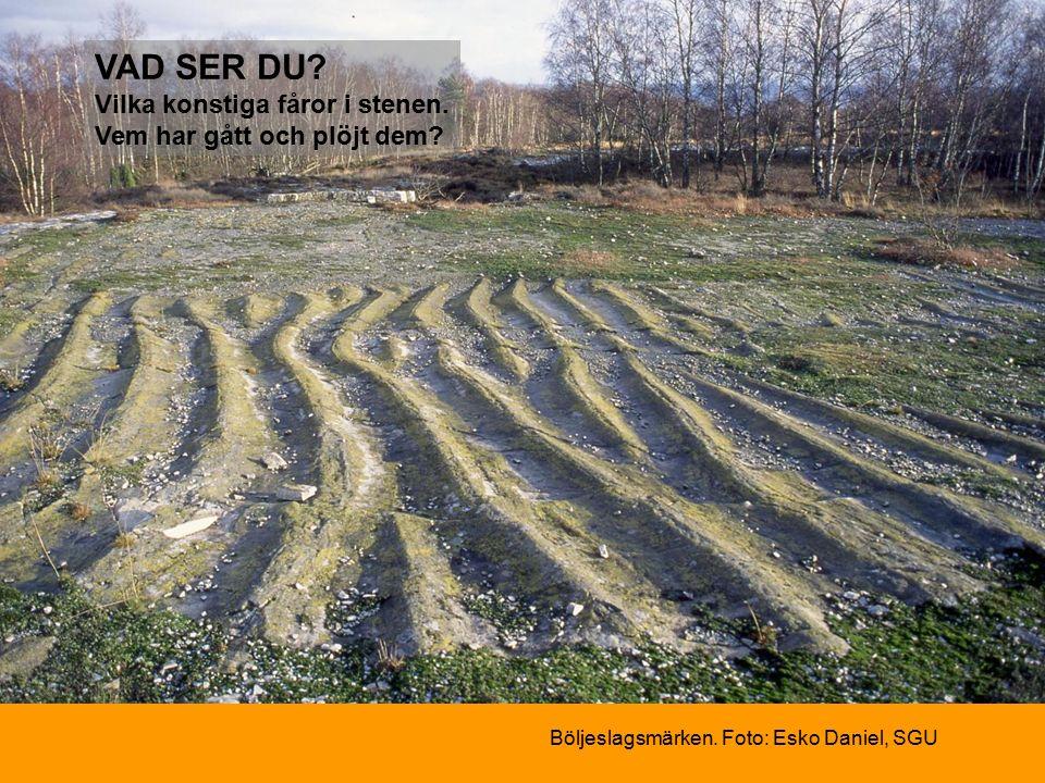Böljeslagsmärken. Foto: Esko Daniel, SGU VAD SER DU.