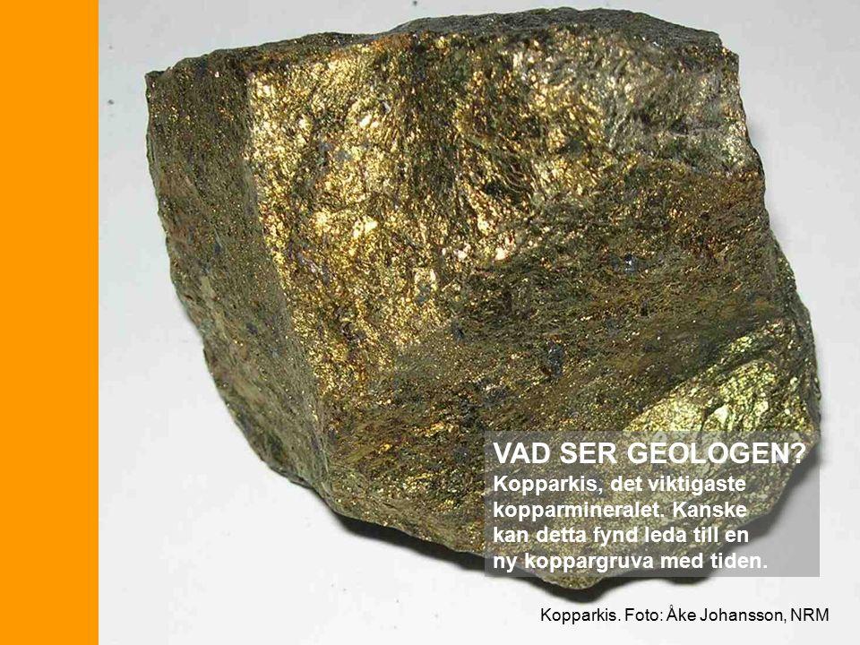 Kopparkis. Foto: Åke Johansson, NRM VAD SER GEOLOGEN.