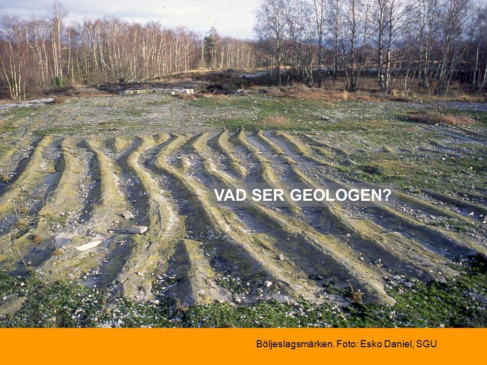 Böljeslagsmärken. Foto: Esko Daniel, SGU VAD SER GEOLOGEN
