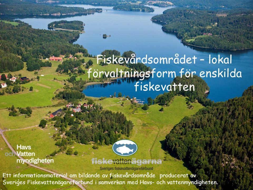 Fiskevårdsområdet – lokal förvaltningsform för enskilda fiskevatten Ett informationsmaterial om bildande av fiskevårdsområde producerat av Sveriges Fi