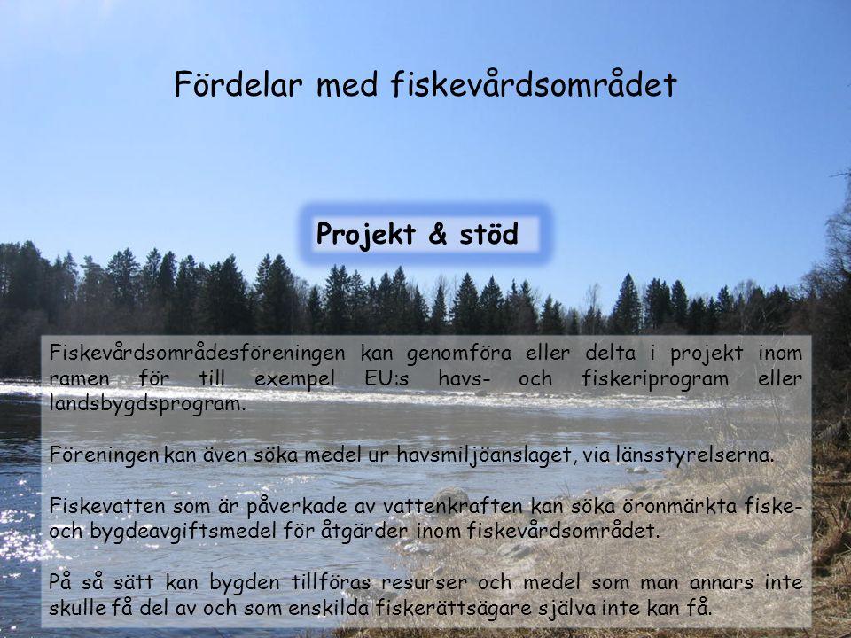 Fördelar med fiskevårdsområdet Projekt & stöd Fiskevårdsområdesföreningen kan genomföra eller delta i projekt inom ramen för till exempel EU:s havs- o