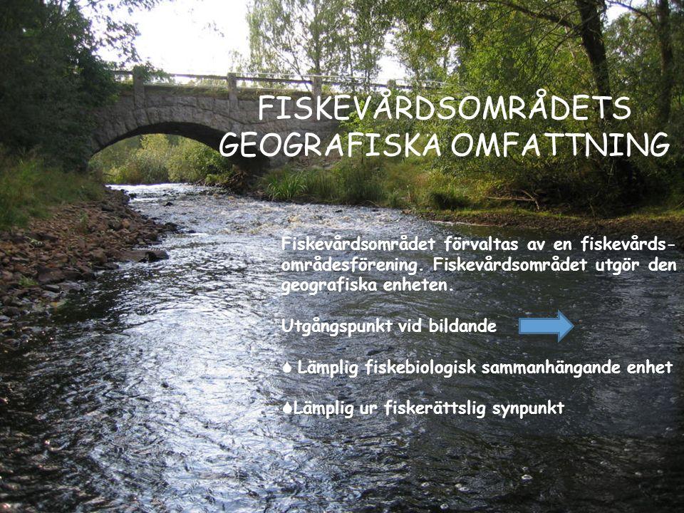 FISKEVÅRDSOMRÅDETS GEOGRAFISKA OMFATTNING Fiskevårdsområdet förvaltas av en fiskevårds- områdesförening. Fiskevårdsområdet utgör den geografiska enhet