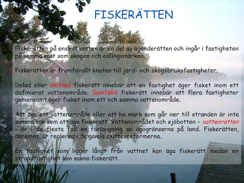 Fiskerätten på enskilt vatten är en del av äganderätten och ingår i fastigheten på samma sätt som skogen och odlingsmarken. Fiskerätten är framförallt