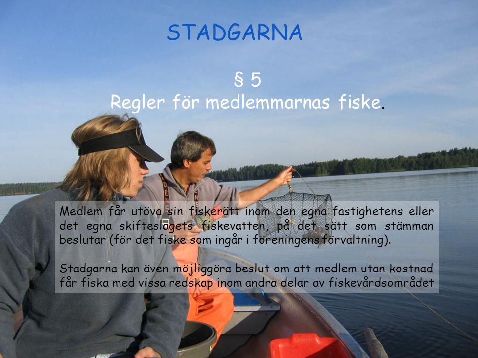 STADGARNA § 5 Regler för medlemmarnas fiske. Medlem får utöva sin fiskerätt inom den egna fastighetens eller det egna skifteslagets fiskevatten, på de