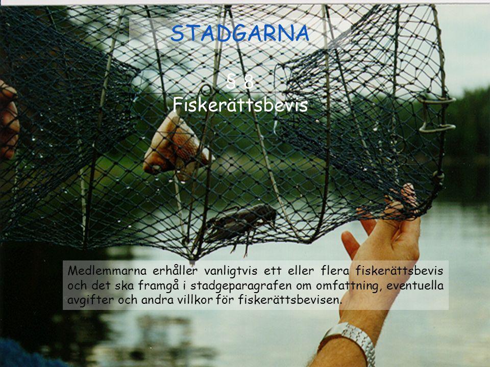 STADGARNA § 8 Fiskerättsbevis Medlemmarna erhåller vanligtvis ett eller flera fiskerättsbevis och det ska framgå i stadgeparagrafen om omfattning, eve