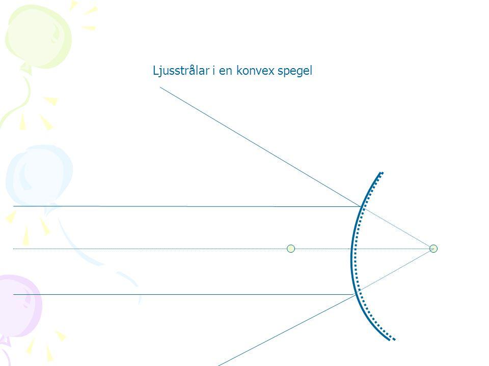 Ljusstrålar i en konvex spegel