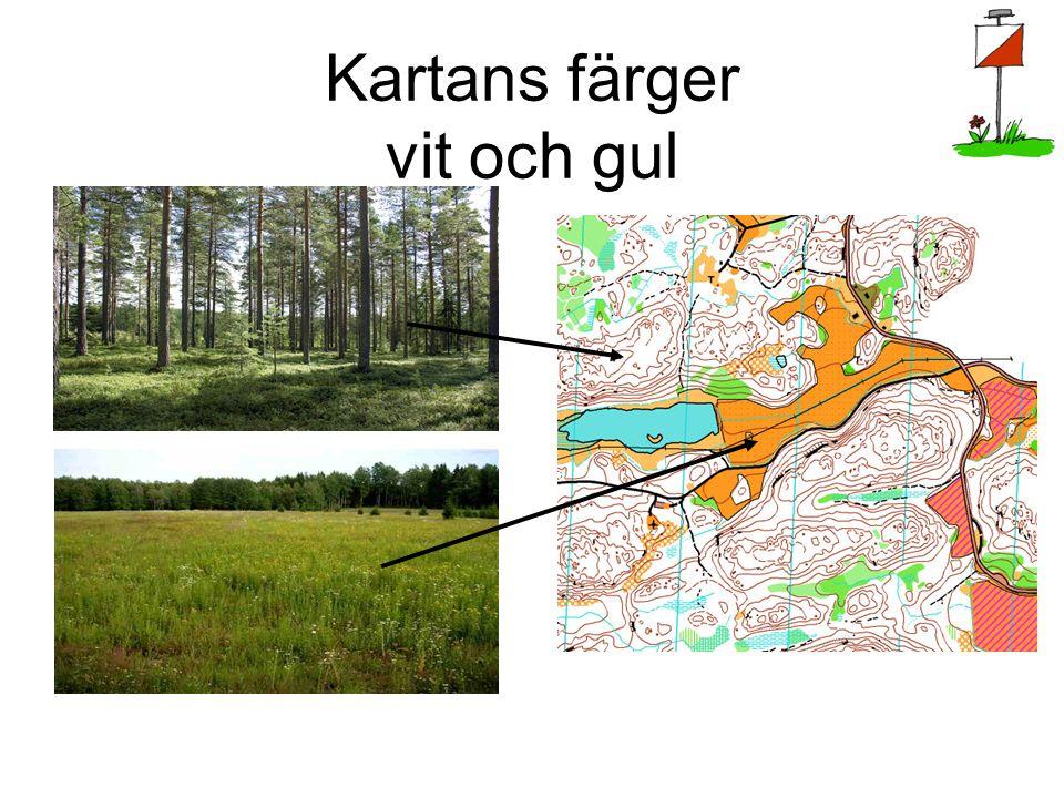 Passa kartan - det viktigaste av allt Kartan är en pusselbit som bara passar på ett sätt Norr på kartan ska följaktligen vara mot norr i verkligheten