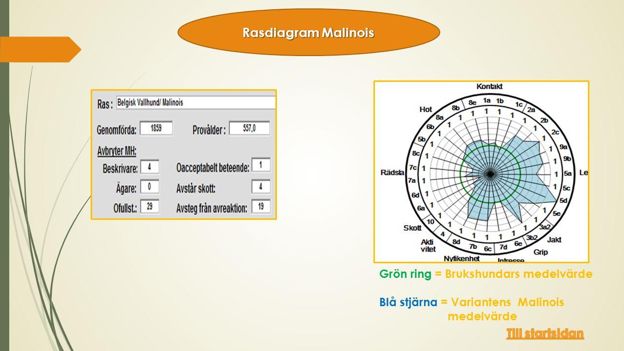 Grön ring = Brukshundars medelvärde Blå stjärna = Variantens Malinois medelvärde Rasdiagram Malinois