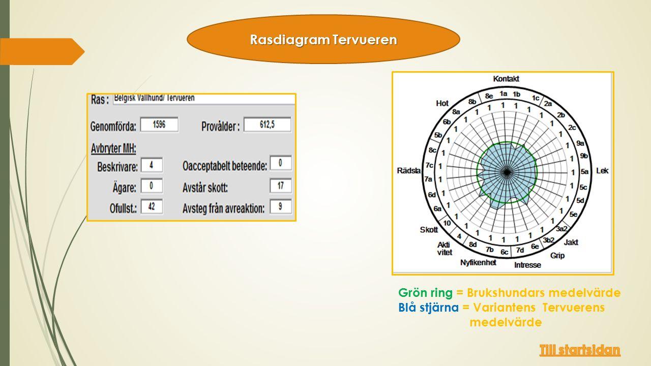 Grön ring = Brukshundars medelvärde Blå stjärna = Variantens Tervuerens medelvärde Rasdiagram Tervueren