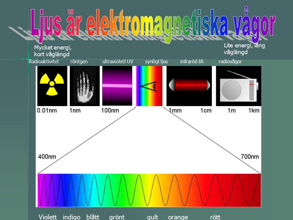 Radioaktivitet röntgen ultraviolett UV synligt ljus infraröd IR radiovågor Violett indigo blått grönt gult orange rött Mycket energi, kort våglängd Lite energi, lång våglängd