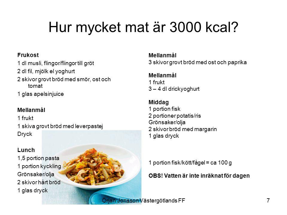 Hur mycket mat är 3000 kcal.