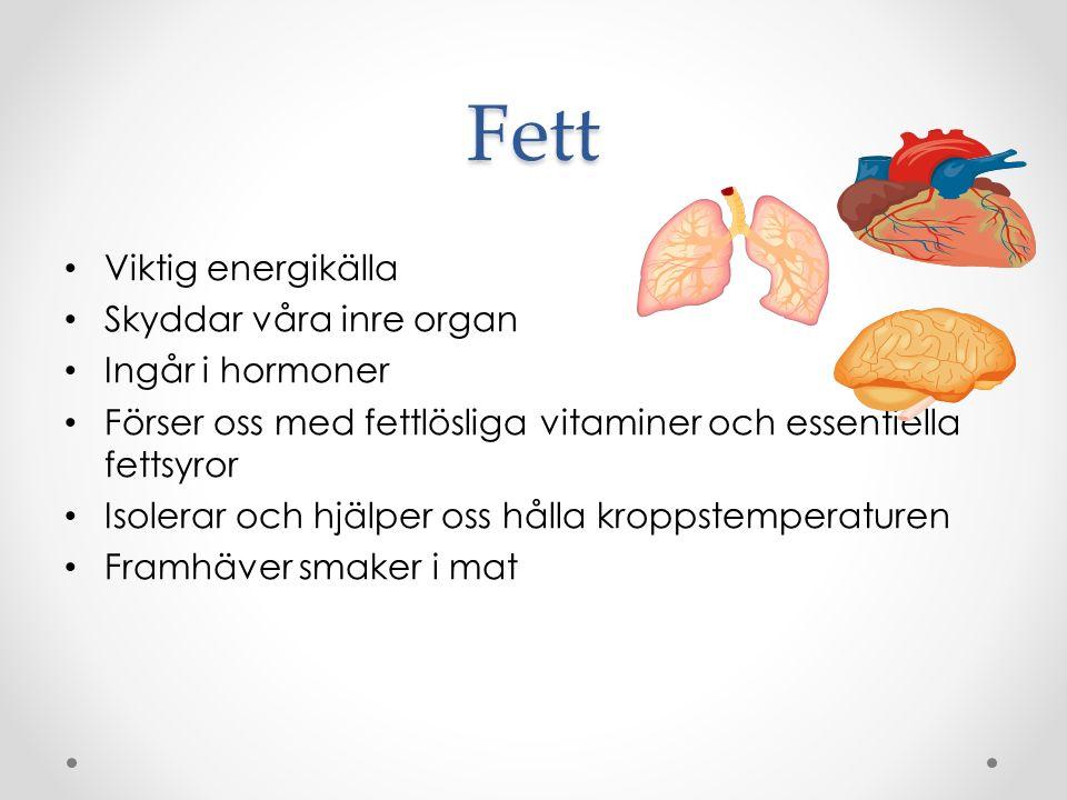 Fett Viktig energikälla Skyddar våra inre organ Ingår i hormoner Förser oss med fettlösliga vitaminer och essentiella fettsyror Isolerar och hjälper oss hålla kroppstemperaturen Framhäver smaker i mat