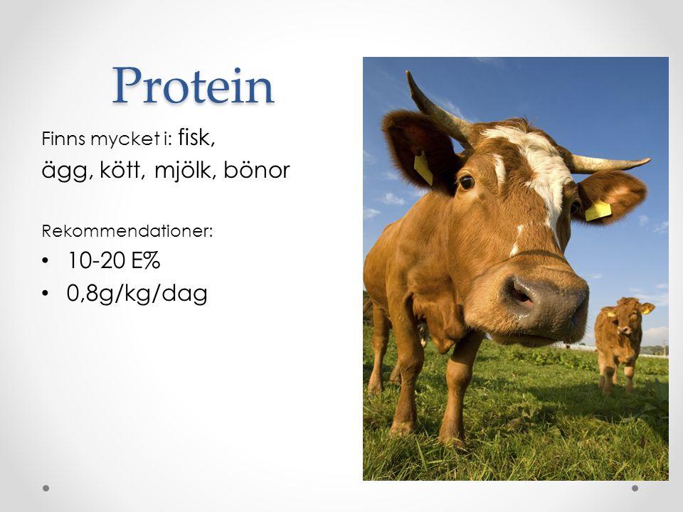 Protein Finns mycket i: fisk, ägg, kött, mjölk, bönor Rekommendationer: 10-20 E% 0,8g/kg/dag