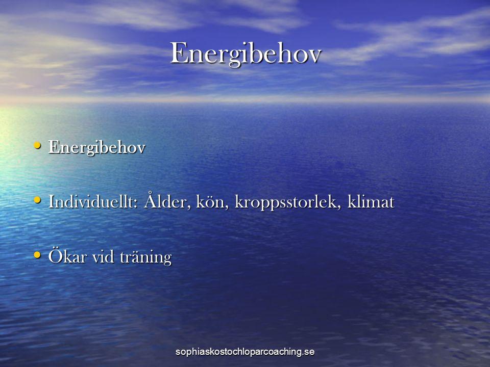 Energibehov Energibehov Energibehov Individuellt: Ålder, kön, kroppsstorlek, klimat Individuellt: Ålder, kön, kroppsstorlek, klimat Ökar vid träning Ö