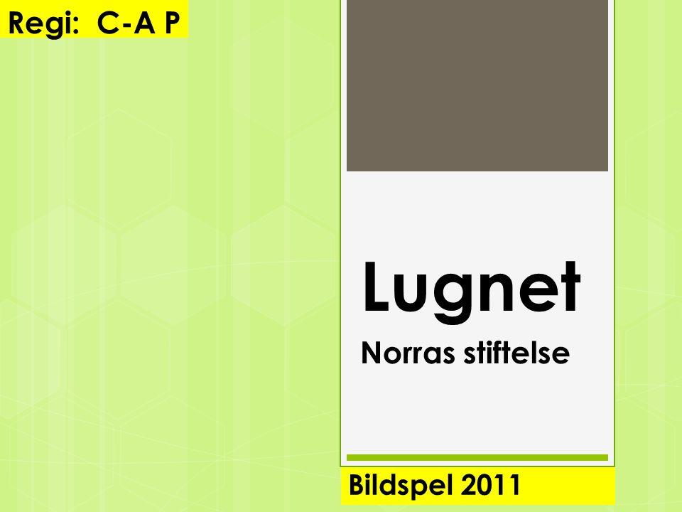 Lugnet Norras stiftelse Bildspel 2011 Regi: C-A P