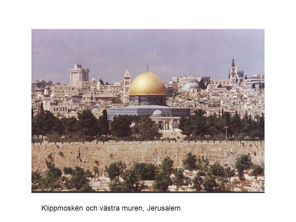 Mekkas stora moské med Kaba i mitten