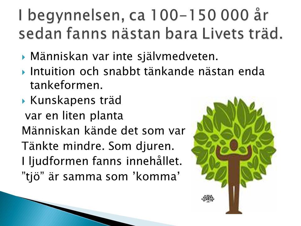  Vårt hjärta är mer öppet på meänkieli. Mer slutet på svenska.