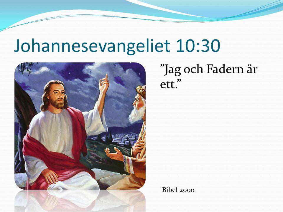 Johannesevangeliet 10:30 Jag och Fadern är ett. Bibel 2000