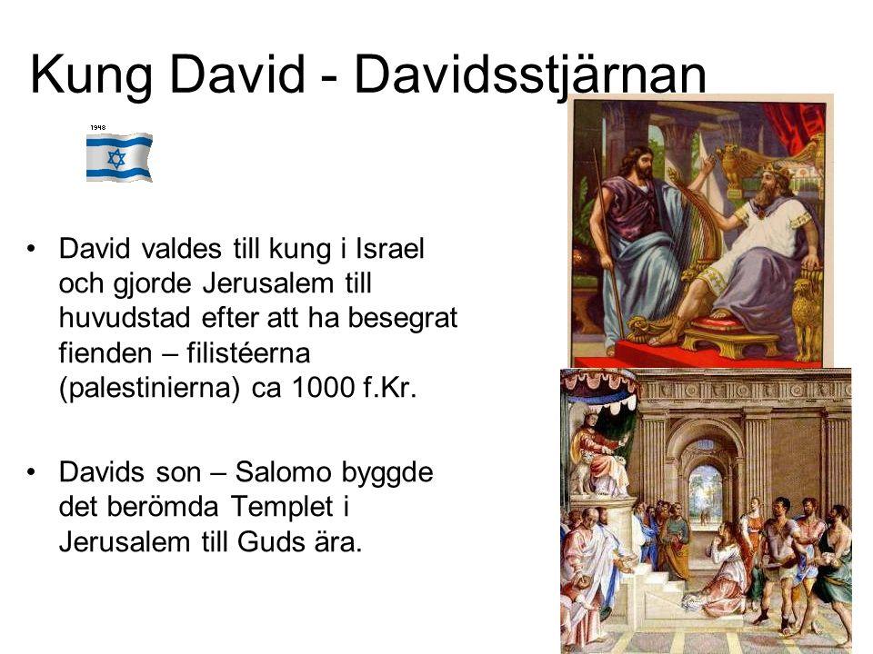 Kung David - Davidsstjärnan David valdes till kung i Israel och gjorde Jerusalem till huvudstad efter att ha besegrat fienden – filistéerna (palestinierna) ca 1000 f.Kr.