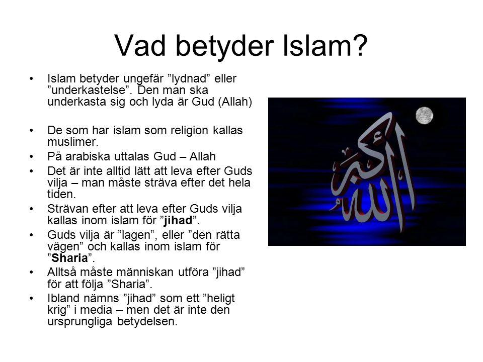 """Vad betyder Islam? Islam betyder ungefär """"lydnad"""" eller """"underkastelse"""". Den man ska underkasta sig och lyda är Gud (Allah) De som har islam som relig"""