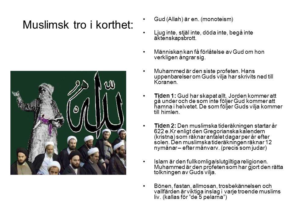 Muslimsk tro i korthet: Gud (Allah) är en. (monoteism) Ljug inte, stjäl inte, döda inte, begå inte äktenskapsbrott. Människan kan få förlåtelse av Gud