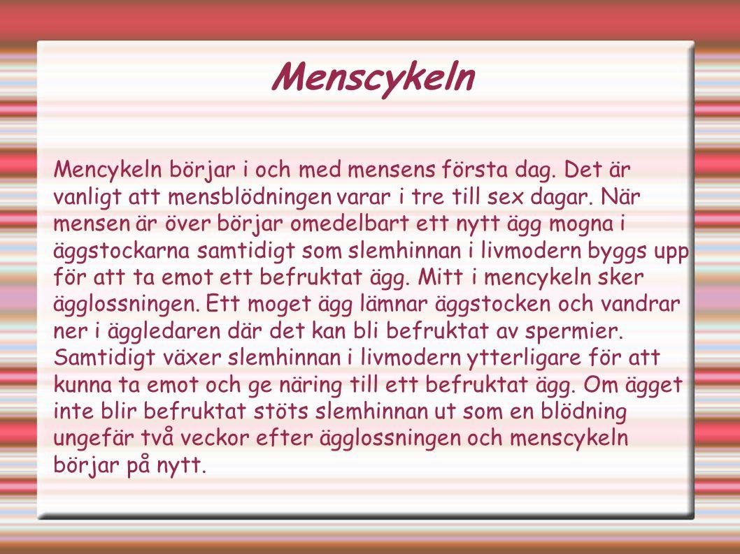 Menscykeln Mencykeln börjar i och med mensens första dag.