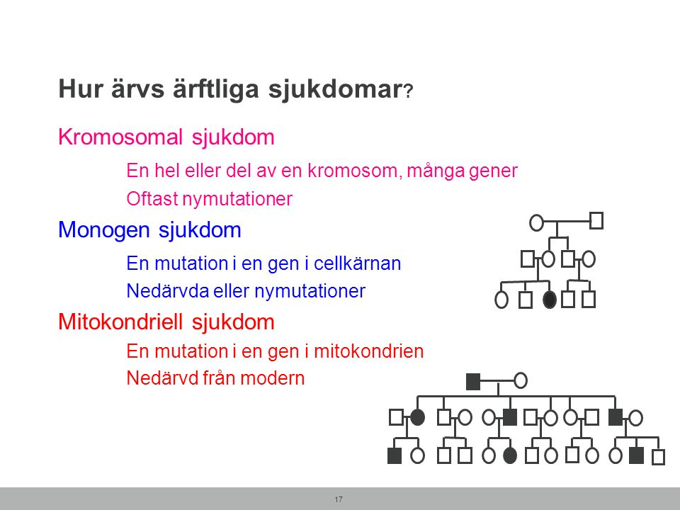 Hur ärvs ärftliga sjukdomar ? Kromosomal sjukdom En hel eller del av en kromosom, många gener Oftast nymutationer Monogen sjukdom En mutation i en gen