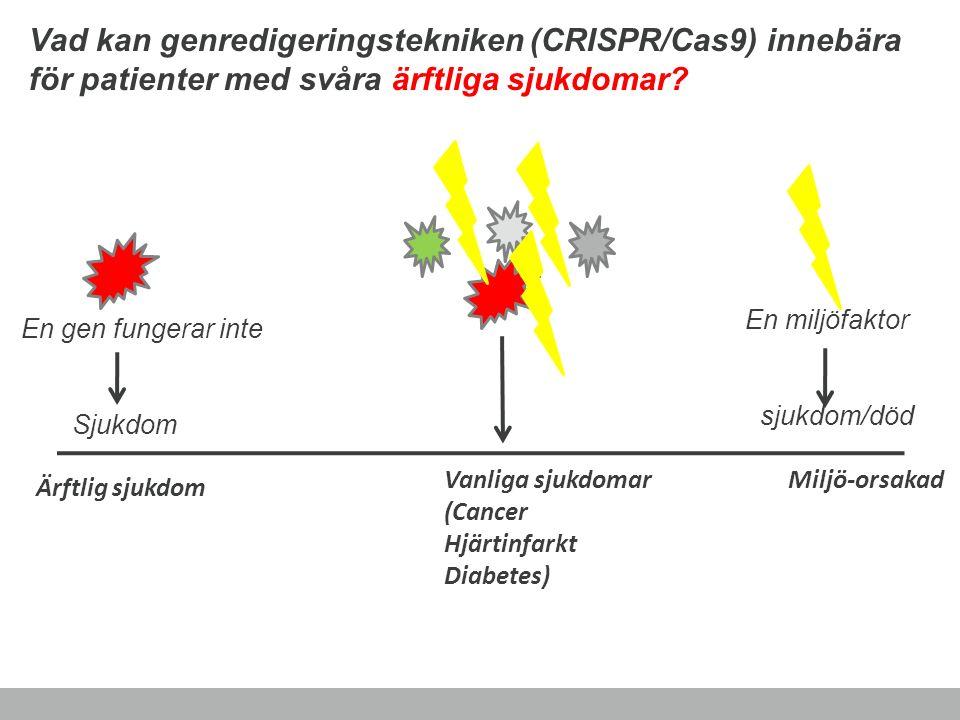 Vad kan genredigeringstekniken (CRISPR/Cas9) innebära för patienter med svåra ärftliga sjukdomar? Miljö-orsakad En gen fungerar inte Sjukdom En miljöf
