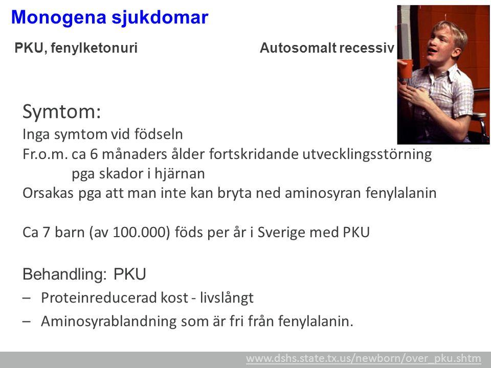 PKU, fenylketonuriAutosomalt recessiv Symtom: Inga symtom vid födseln Fr.o.m. ca 6 månaders ålder fortskridande utvecklingsstörning pga skador i hjärn