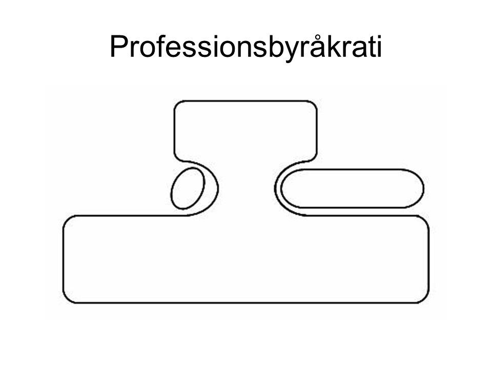 Professionsbyråkrati