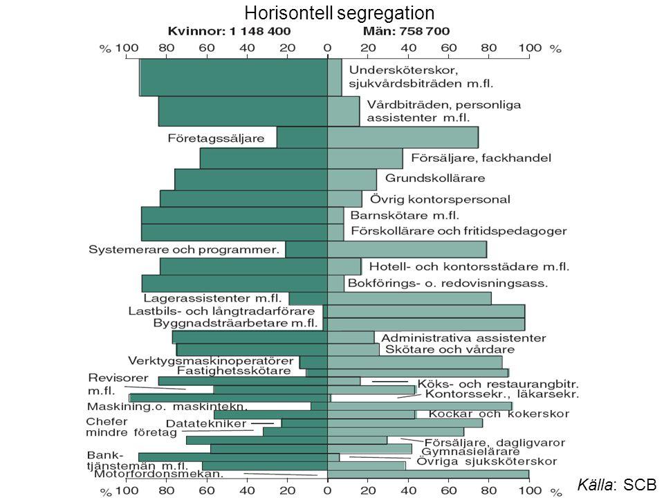 Källa: SCB Horisontell segregation