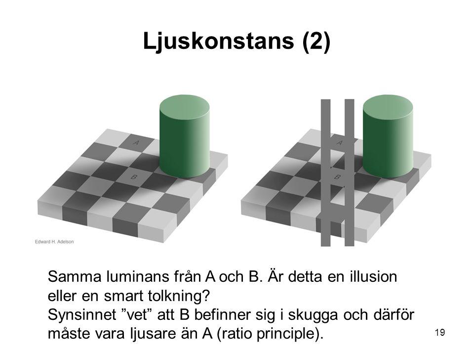19 Ljuskonstans (2) Samma luminans från A och B. Är detta en illusion eller en smart tolkning.