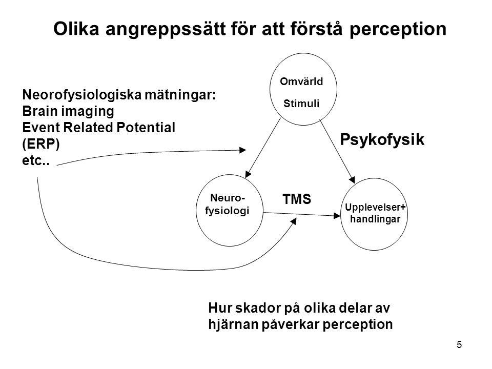 26 Perception av form/objekt/struktur Några olika angreppssätt: - Gestalt approach -Recognition by components (Biederman) -Perceptuell intelligens, Synsinnet som smart statistiker.
