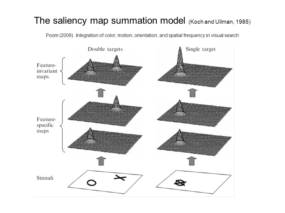 The saliency map summation model (Koch and Ullman, 1985) Poom (2009).