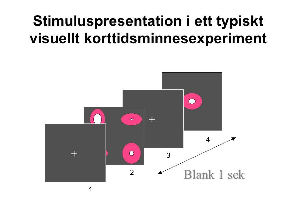 Stimuluspresentation i ett typiskt visuellt korttidsminnesexperiment 1 2 3 4 Blank 1 sek