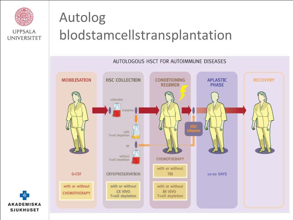 Autolog blodstamcellstransplantation