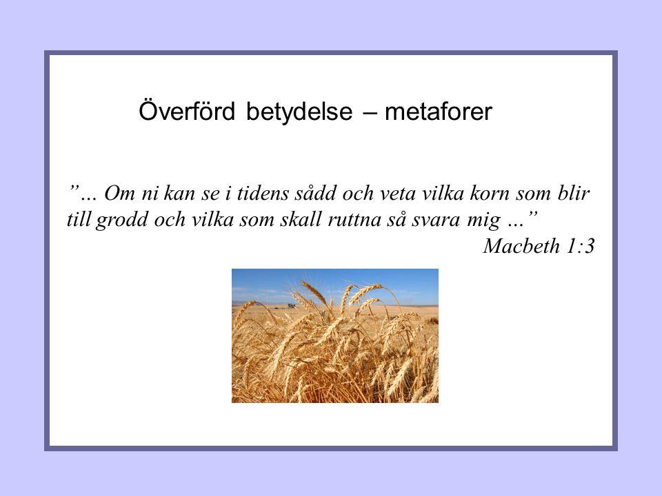 Överförd betydelse – metaforer … Om ni kan se i tidens sådd och veta vilka korn som blir till grodd och vilka som skall ruttna så svara mig … Macbeth 1:3