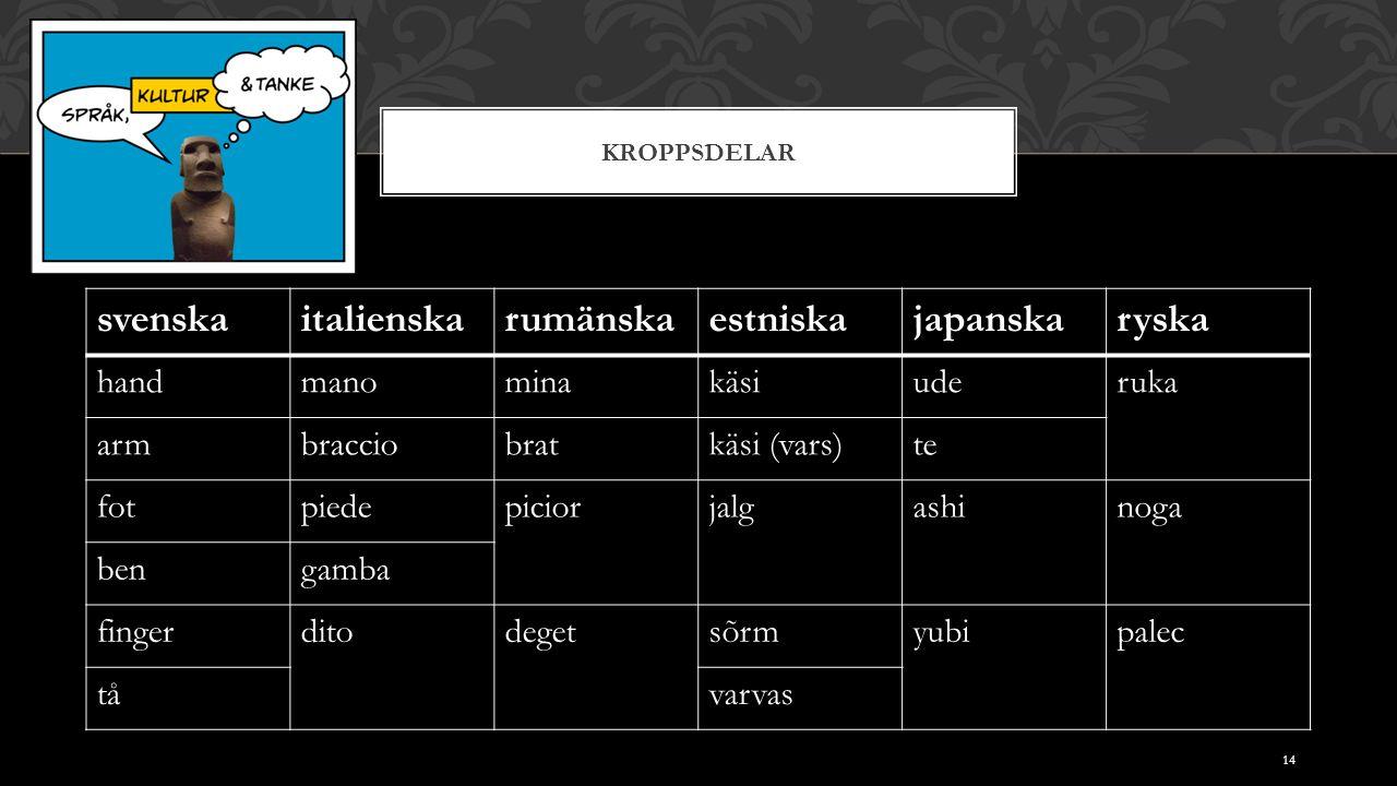 KROPPSDELAR svenskaitalienskarumänskaestniskajapanskaryska handmanominakäsiuderuka armbracciobratkäsi (vars)te fotpiedepiciorjalgashinoga bengamba fin