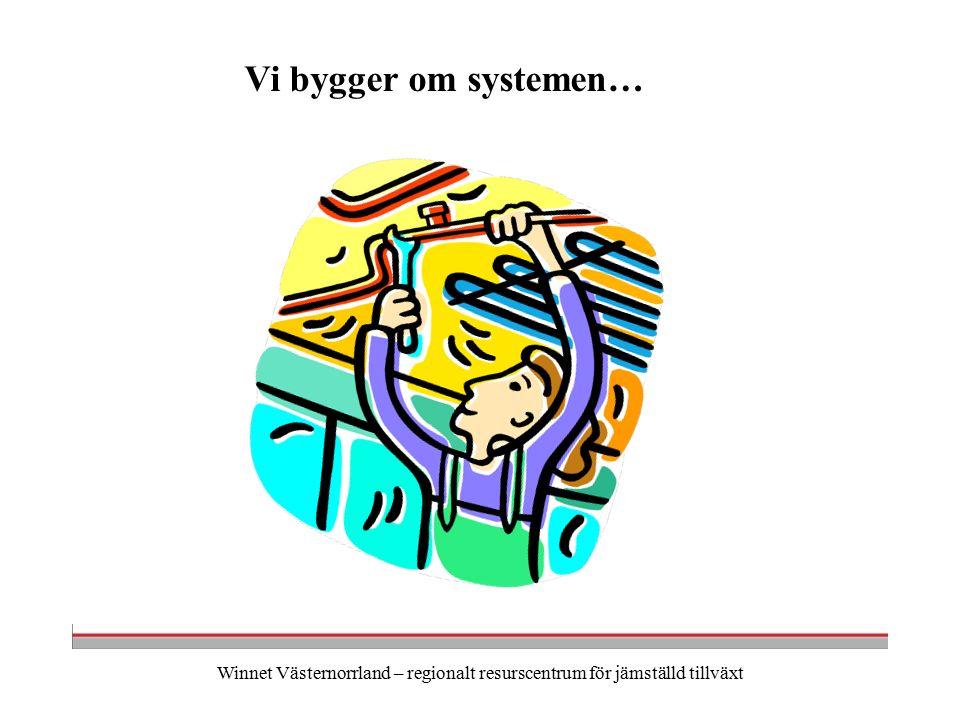 Winnet Västernorrland – regionalt resurscentrum för jämställd tillväxt Vi bygger om systemen…