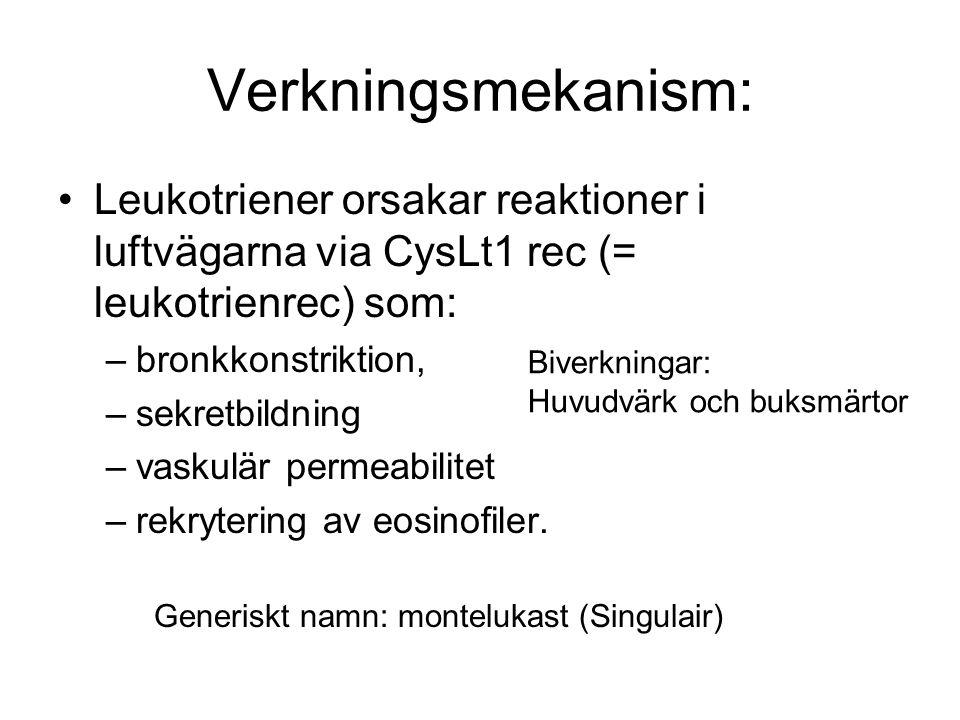 Verkningsmekanism: Leukotriener orsakar reaktioner i luftvägarna via CysLt1 rec (= leukotrienrec) som: –bronkkonstriktion, –sekretbildning –vaskulär permeabilitet –rekrytering av eosinofiler.