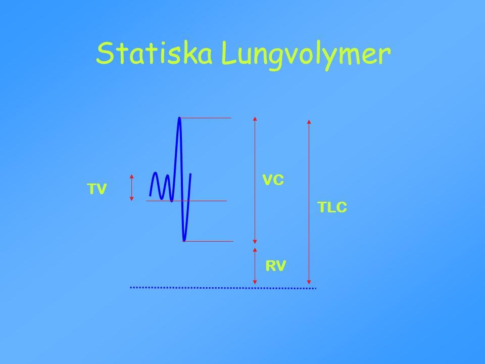 VC RV TLC Statiska Lungvolymer TV