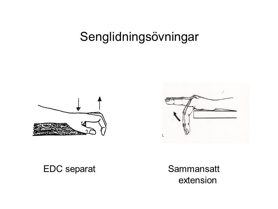 Senglidningsövningar EDC separatSammansatt extension