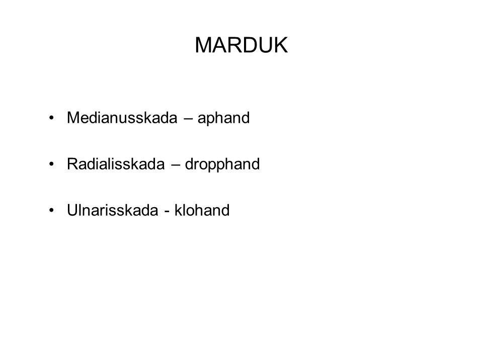 MARDUK Medianusskada – aphand Radialisskada – dropphand Ulnarisskada - klohand