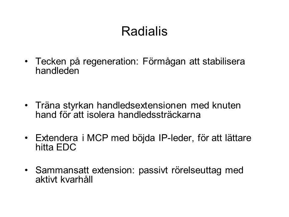 Radialis Tecken på regeneration: Förmågan att stabilisera handleden Träna styrkan handledsextensionen med knuten hand för att isolera handledssträckar