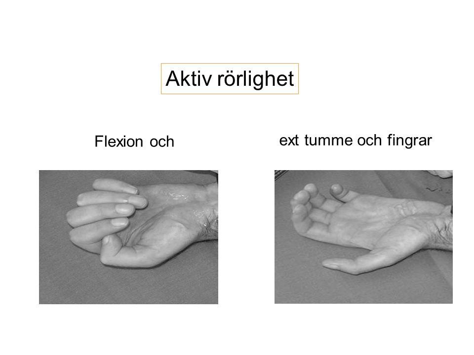 ext tumme och fingrar Flexion och Aktiv rörlighet