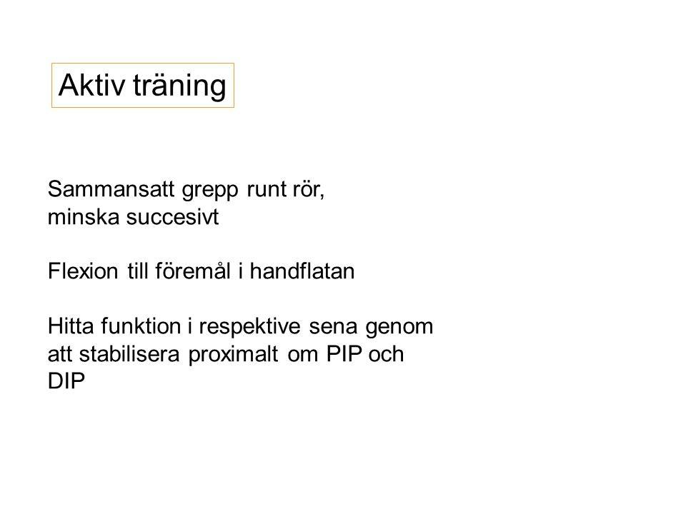 Aktiv träning Sammansatt grepp runt rör, minska succesivt Flexion till föremål i handflatan Hitta funktion i respektive sena genom att stabilisera pro