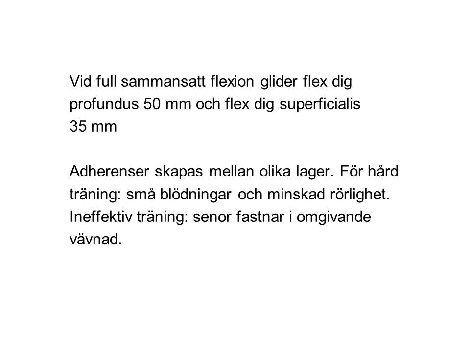 Vid full sammansatt flexion glider flex dig profundus 50 mm och flex dig superficialis 35 mm Adherenser skapas mellan olika lager. För hård träning: s