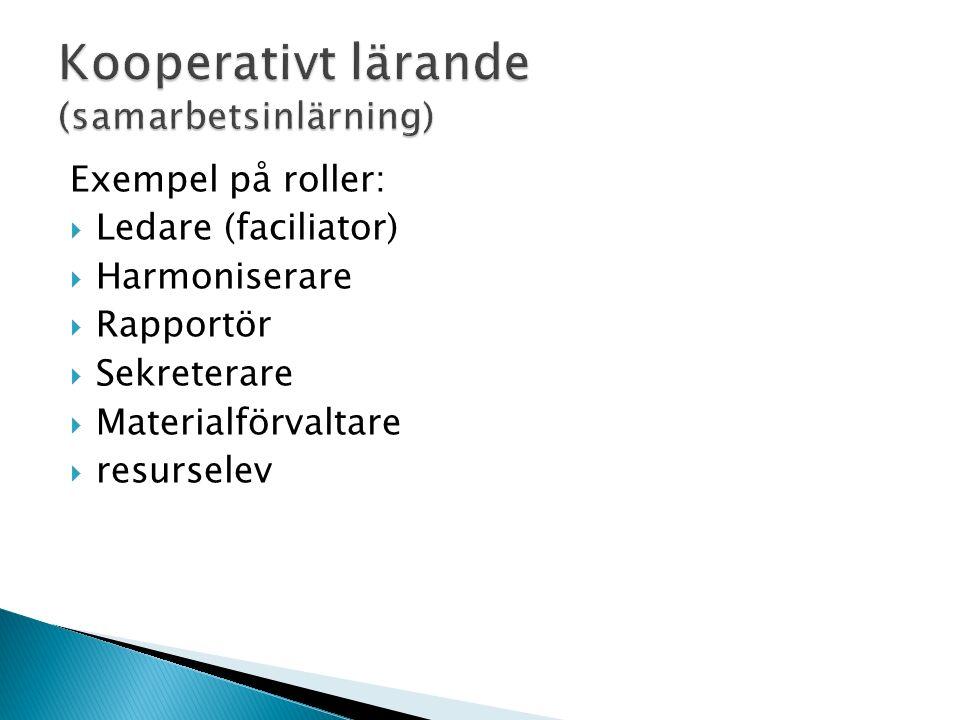 Exempel på roller:  Ledare (faciliator)  Harmoniserare  Rapportör  Sekreterare  Materialförvaltare  resurselev