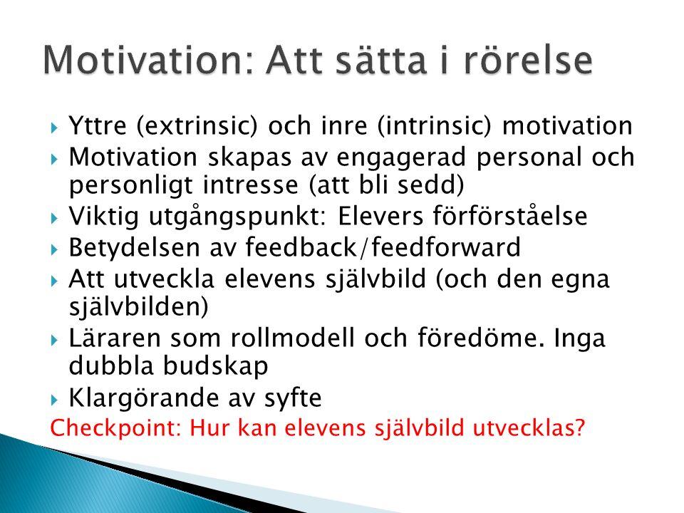  Yttre (extrinsic) och inre (intrinsic) motivation  Motivation skapas av engagerad personal och personligt intresse (att bli sedd)  Viktig utgångsp
